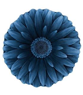 فرش سه بعدی زرباف طرح گل داوودی آبی 100*100
