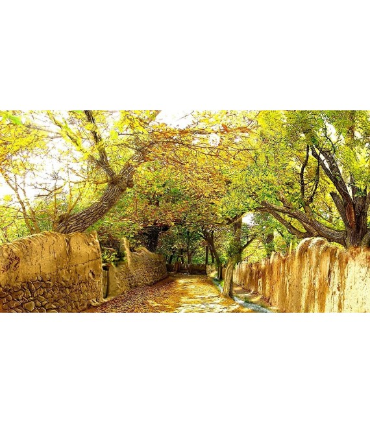 نخ و نقشه تابلو فرش طبیعت کد 7 طرح کوچه باغ با صفا